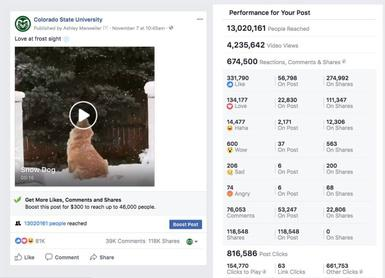 Amazing viral video stats from Colorado State University
